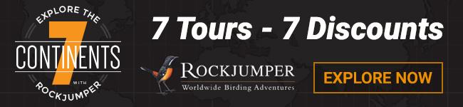 Rockjumper Tours